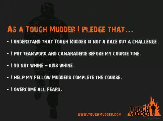 pledge-poster